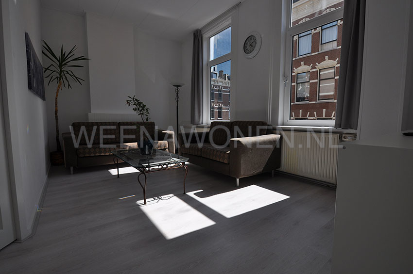Furnished two room apartment for rent on the Molenwaterweg in Rotterdam center.