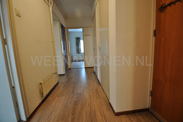 room-rotterdam-to rent