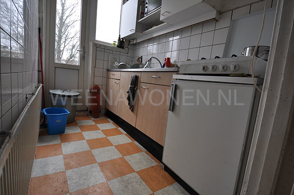 rotterdam-room-to-rent