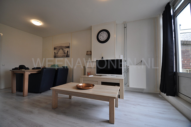 Room for rent Rotterdam